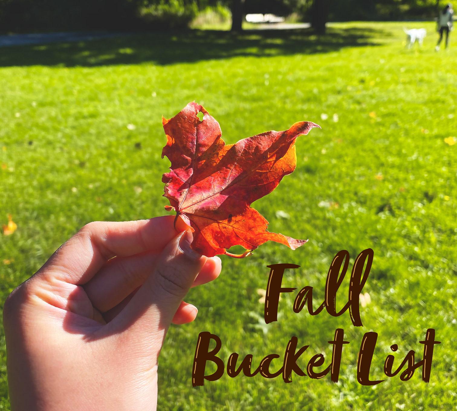 Fall 2020 Bucket List: Corona-safe activities to do this fall